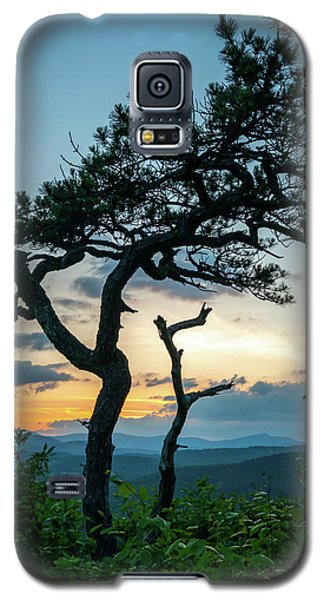 Blue Ridge Mountains Dr. Tree Galaxy S5 Case