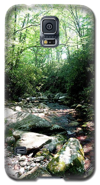 Galaxy S5 Case featuring the photograph Blue Ridge Parkway Stream by Meta Gatschenberger