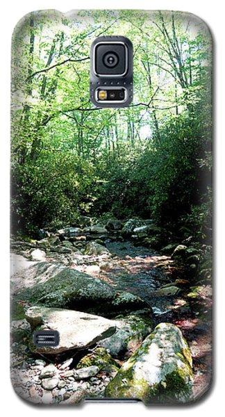 Blue Ridge Parkway Stream Galaxy S5 Case