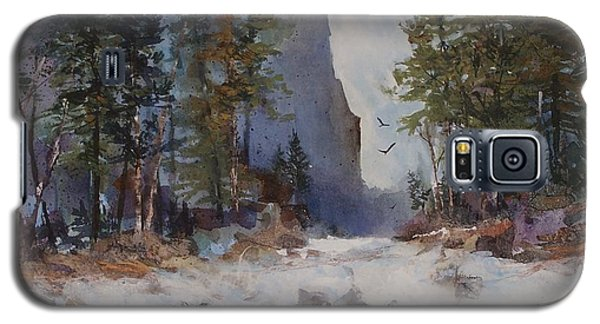 Galaxy S5 Case featuring the painting Blue Ridge Pass by Helen Harris