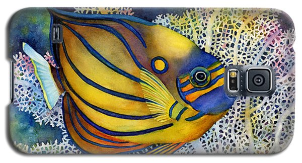 Blue Ring Angelfish Galaxy S5 Case