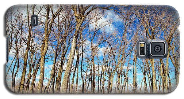 Galaxy S5 Case featuring the photograph Blue Sky And Trees by Valentino Visentini