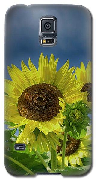 Blue Sky Day Galaxy S5 Case