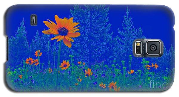 Blue Summer Galaxy S5 Case by Janice Westerberg