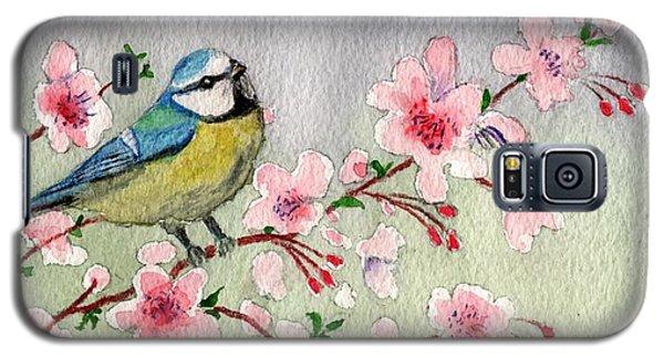 Blue Tit Bird On Cherry Blossom Tree Galaxy S5 Case