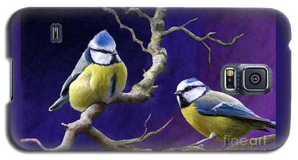 Blue Titmouse Galaxy S5 Case by Judy Filarecki