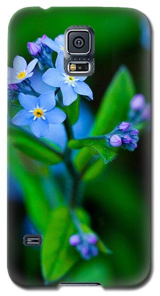 Blue Topper Galaxy S5 Case