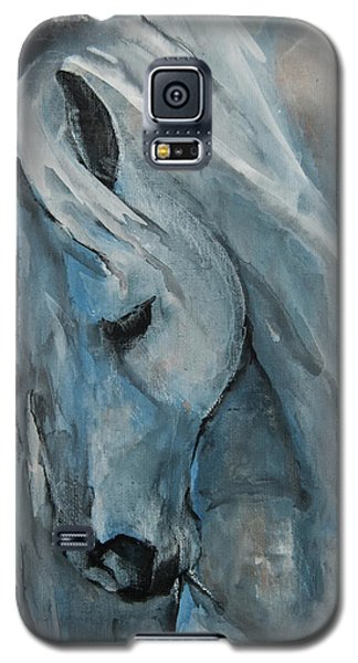 Tranquility Galaxy S5 Case by Jani Freimann