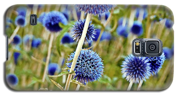 Blue Wild Thistle Galaxy S5 Case