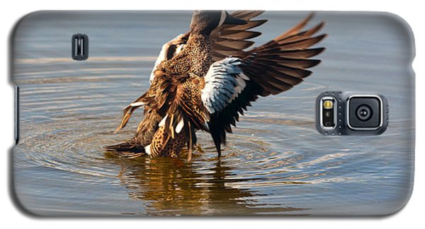 Blue Winged Teal 2 Galaxy S5 Case