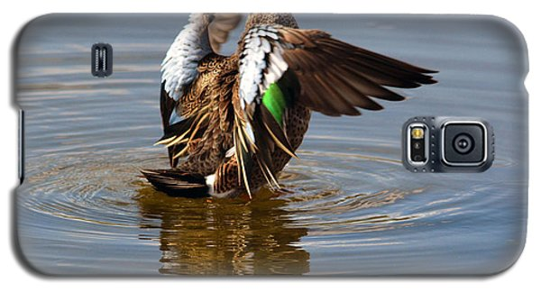 Blue Winged Teal 4 Galaxy S5 Case