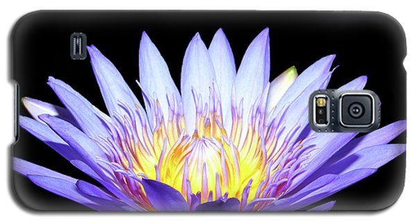 Galaxy S5 Case featuring the photograph Blue Wonder by Judy Vincent