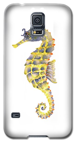 Blue Yellow Seahorse - Square Galaxy S5 Case by Amy Kirkpatrick