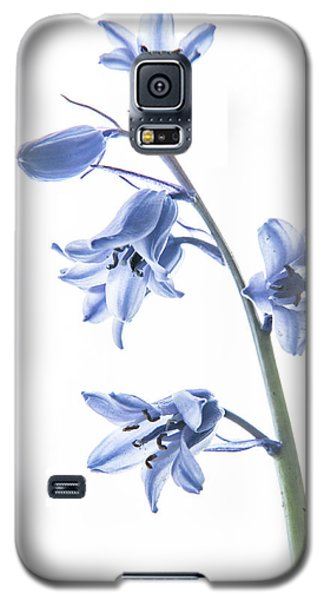 Bluebell Stem Galaxy S5 Case