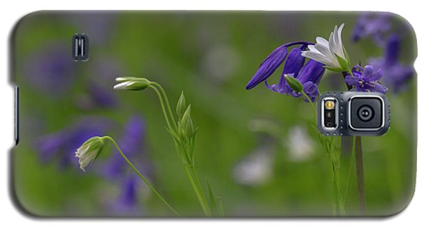Bluebells And Stitchwort  Galaxy S5 Case