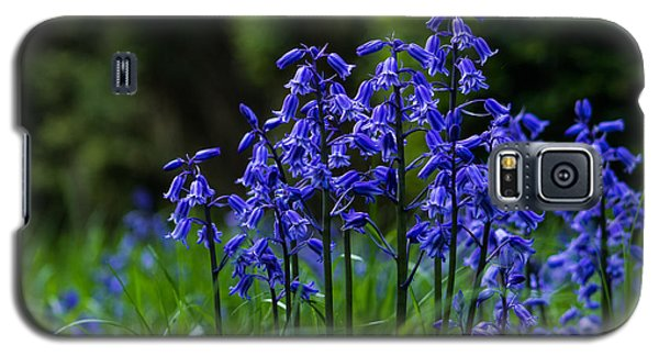 Bluebells Galaxy S5 Case