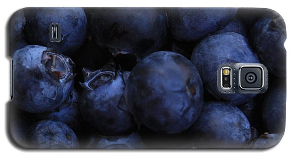 Blueberries Close-up - Horizontal Galaxy S5 Case