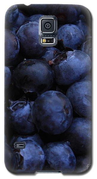 Blueberries Close-up - Vertical Galaxy S5 Case by Carol Groenen