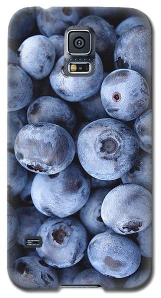Blueberries Foodie Phone Case Galaxy S5 Case by Edward Fielding