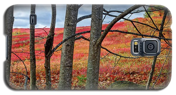 Blueberry Field Through The Wall - Cropped Galaxy S5 Case