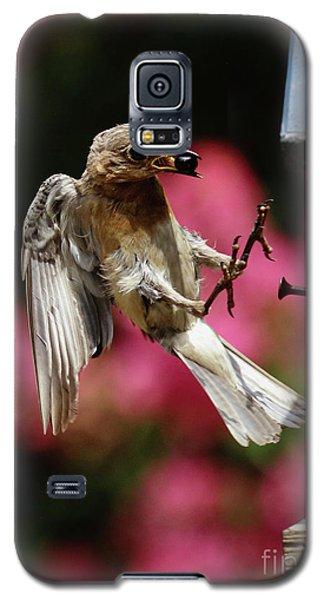 Galaxy S5 Case featuring the photograph Bluebird 0726162 by Douglas Stucky