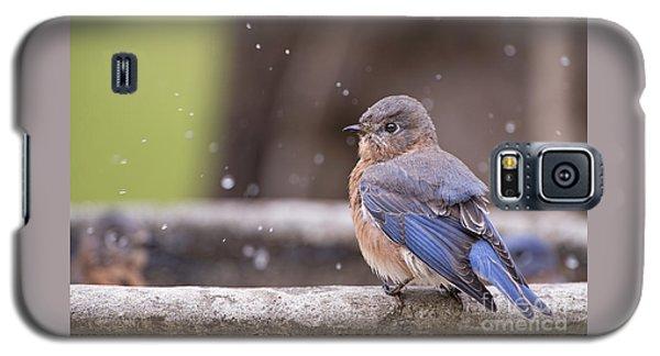Bluebird Bubble Bath Galaxy S5 Case by Bonnie Barry