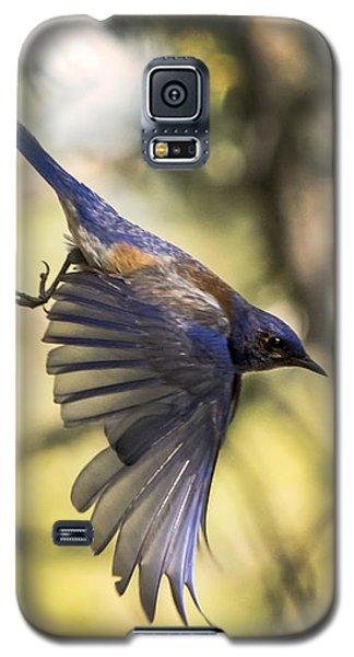 Western Bluebird Galaxy S5 Case