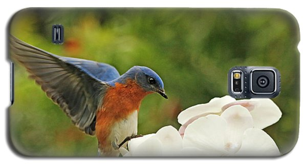 Bluebird Landing On Orchid Galaxy S5 Case by Luana K Perez
