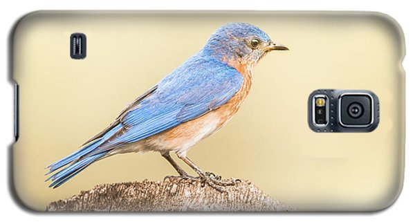 Galaxy S5 Case featuring the photograph Bluebird On Fence Post by Robert Frederick
