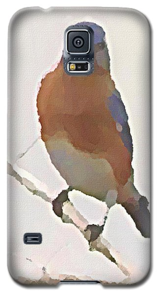 Bluebird Stare  Galaxy S5 Case