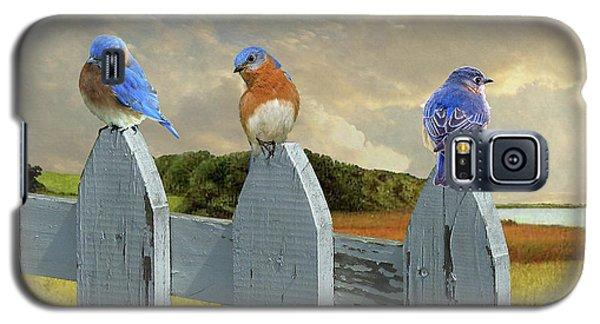 Bluebirds In My Heart Galaxy S5 Case