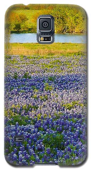 Bluebonnet Field Galaxy S5 Case