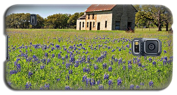 Bluebonnet Field Galaxy S5 Case