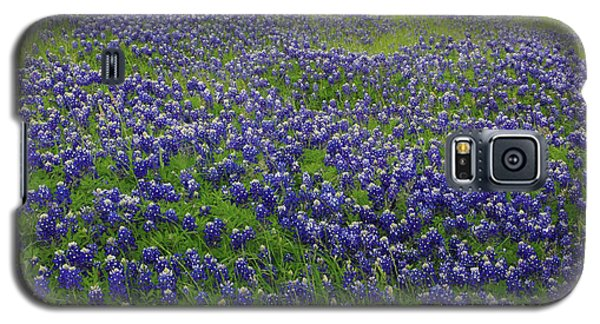 Galaxy S5 Case featuring the photograph Bluebonnet Field by Robyn Stacey