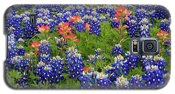 Natures Garden Galaxy S5 Case