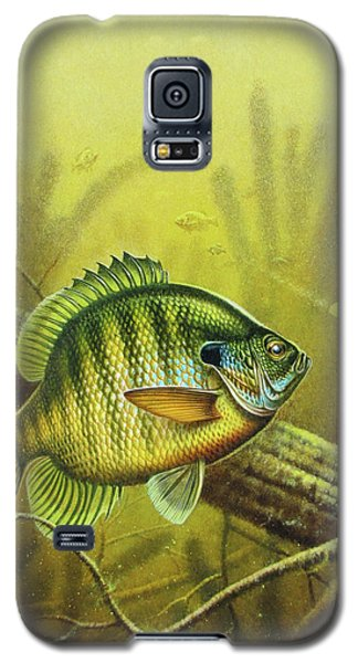 Bluegill And Jig Galaxy S5 Case