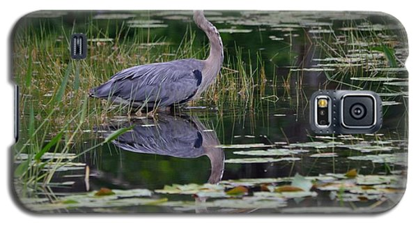 Blue's Image- Great Blue Heron Galaxy S5 Case