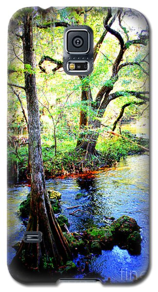 Blues In Florida Swamp Galaxy S5 Case