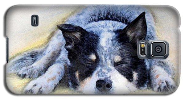 Bluey Galaxy S5 Case