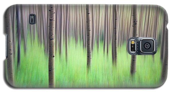 Blurred Aspen Trees Galaxy S5 Case