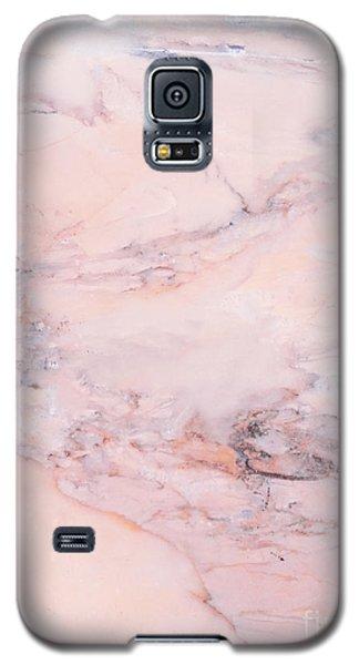 Blush Marble Galaxy S5 Case