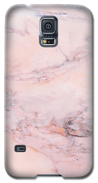 Blush Marble Galaxy S5 Case