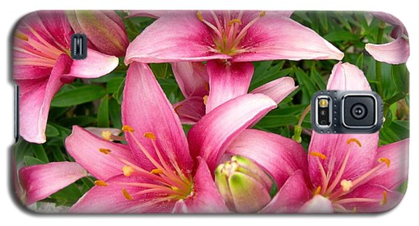 Blush Of The Blossoms Galaxy S5 Case by Randy Rosenberger