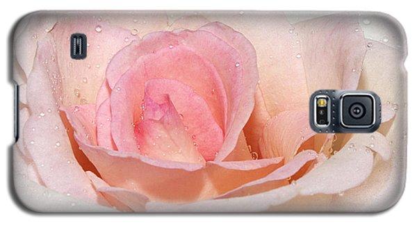 Blush Pink Dewy Rose Galaxy S5 Case