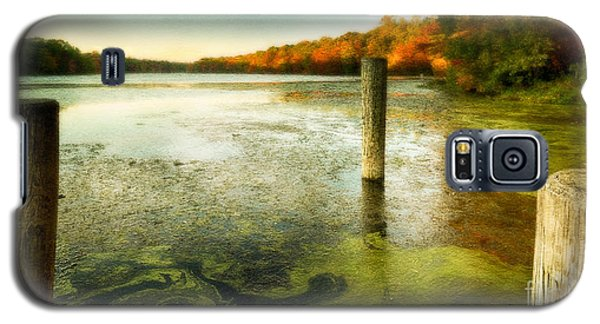 Blydenberg Park In The Fall Galaxy S5 Case