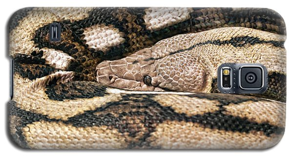 Boa Constrictor Galaxy S5 Case by Tom Mc Nemar