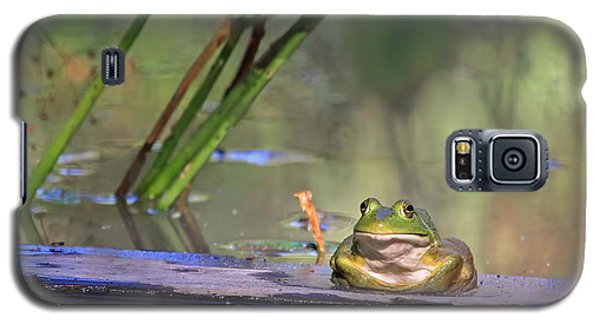 Boardwalk Galaxy S5 Case by Donna Kennedy