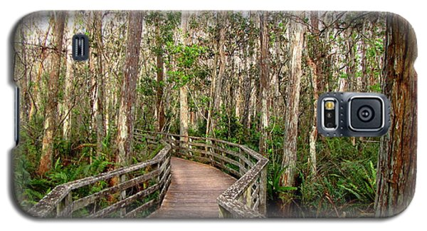 Boardwalk Through Corkscrew Swamp Galaxy S5 Case by Barbara Bowen