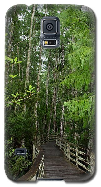 Galaxy S5 Case featuring the photograph Boardwalk Through The Bald Cypress Strand by Barbara Bowen