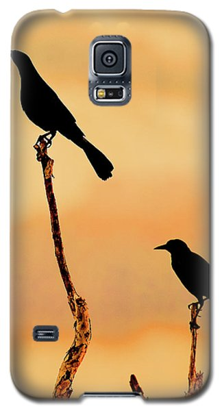 Boat Tailed Grackles Galaxy S5 Case